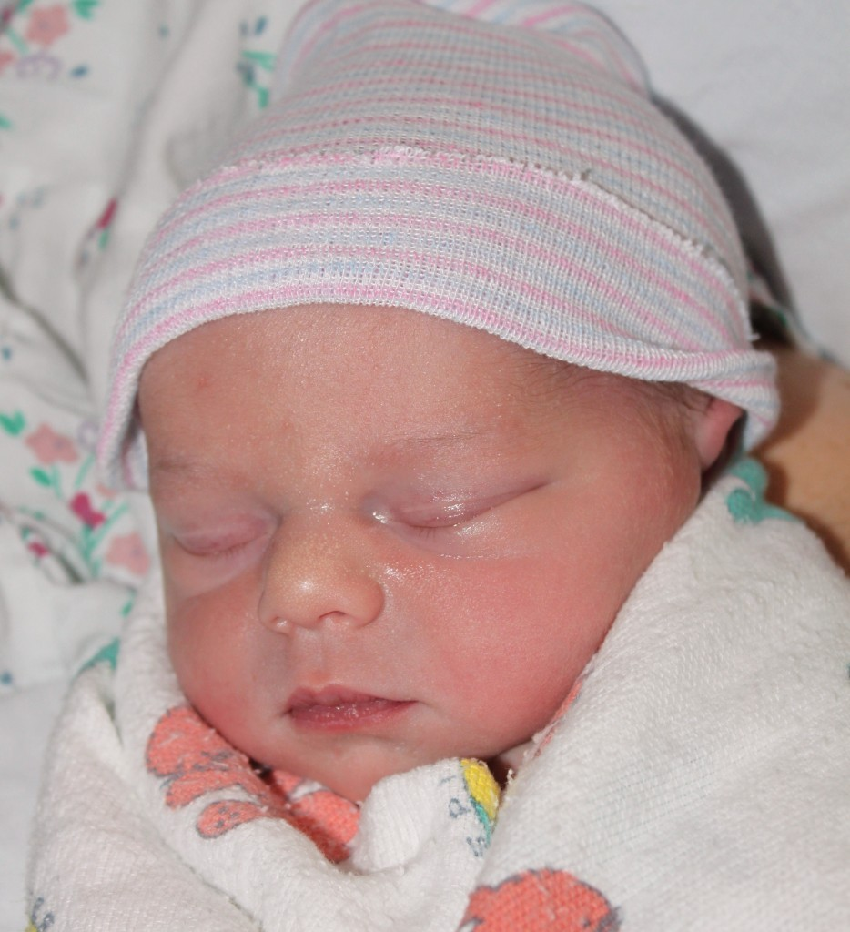 Welcome the Newest Member of the Weightology Family!